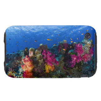 Soft corals on shallow reef, Fiji Tough iPhone 3 Case