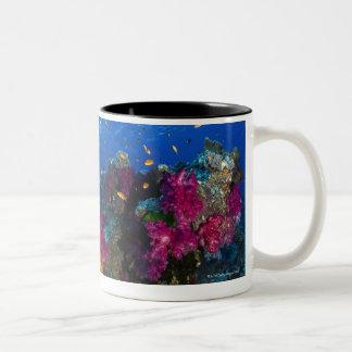 Soft corals on shallow reef, Fiji Two-Tone Coffee Mug