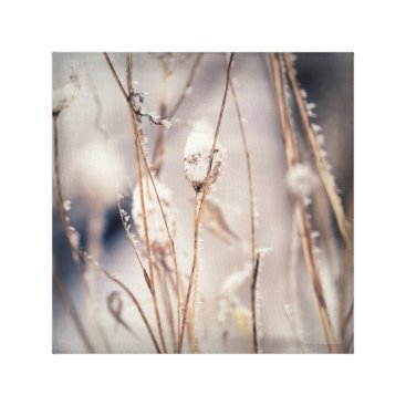 Professional Business Soft Delicate Dried Winter Stems and Wild Flowers Canvas Print