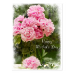 Soft Edged Pink Peonies Mother's Day Postcard