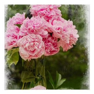 Soft Edged Pink Peony Bouquet Poster