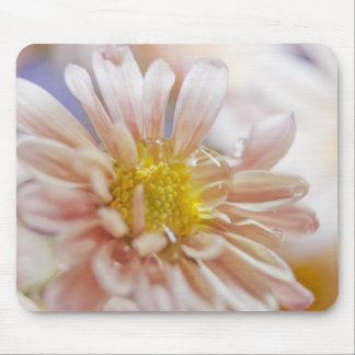Soft Flower and Water Drop Photograph Mouse Pad