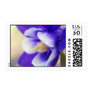 Soft Focus Blue Columbine Postage