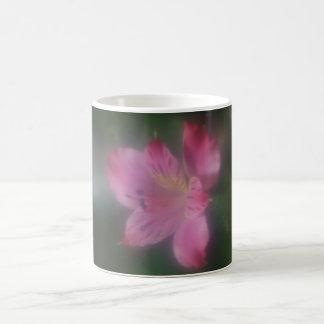 Soft Focus Lens  Flower  Post Mug