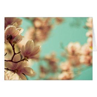 Soft focus magnolia card
