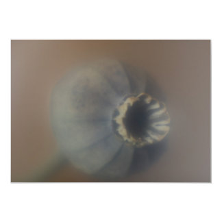 Soft Focus Photo of Poppy Head Invitation 13 Cm X 18 Cm Invitation Card