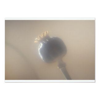 Soft Focus Poppy Seed Head Invitation