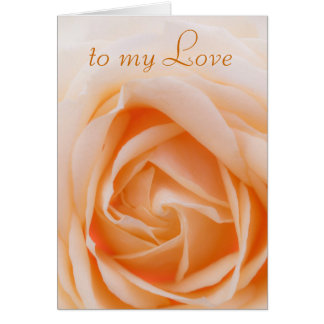 soft focus Rose -  to my Love Card
