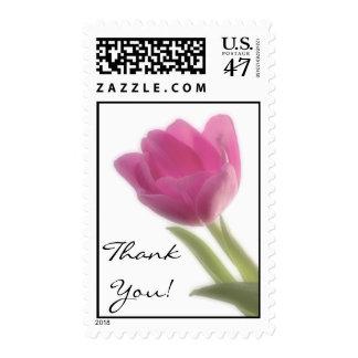 Soft Focus Tulip, ThankYou! Postage Stamp