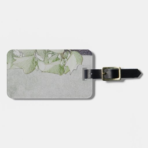 Soft Ivy Tags For Luggage
