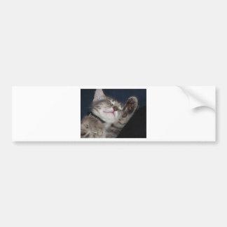 Soft Kitty Bumper Sticker