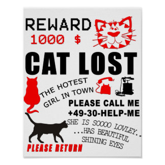 Soft Kitty Lost Poster