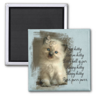 Soft kitty, ragdoll magnet