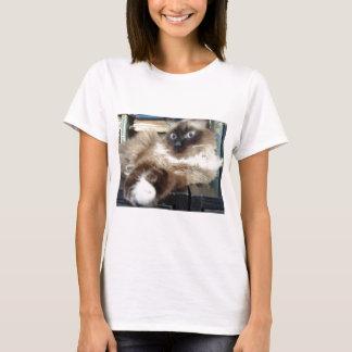 soft kitty warm T-Shirt