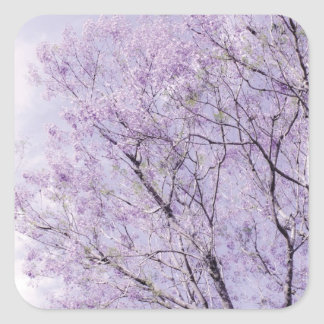 Soft Lavender Floral Branches Square Sticker