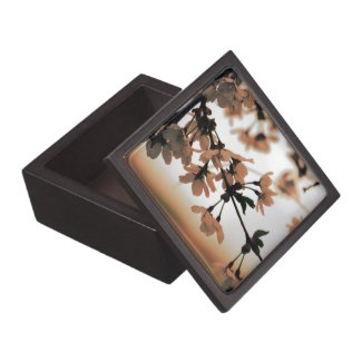 Soft Light Wooden Gift Box