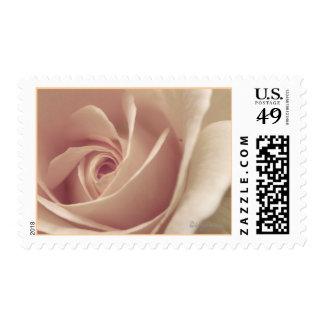 Soft Mauve Rose Wedding Postal Stamp