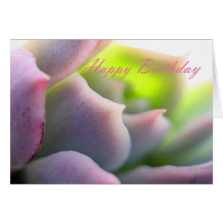 Soft Mauve Succulent - Happy Birthday Card