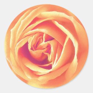 Soft orange rose print classic round sticker