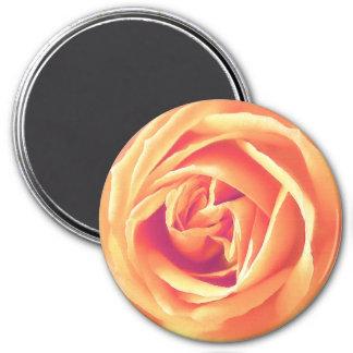 Soft orange rose print magnet