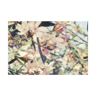 Soft Pastel Floral Branches Stretched Canvas Prints