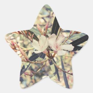 Soft Pastel Floral Branches Star Sticker
