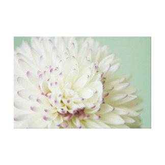 Soft Pastel Flower Photograph Stretched Canvas Print