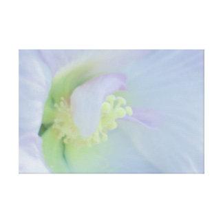 Soft Pastel Flower Photograph Canvas Prints