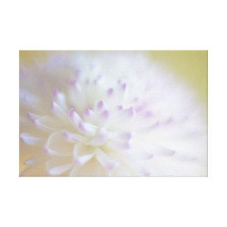 Soft Pastel Flower Photograph Stretched Canvas Prints