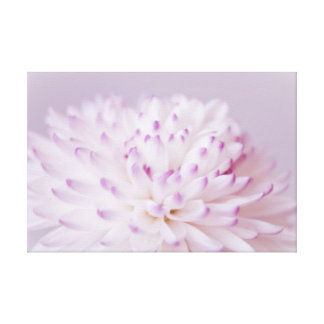 Soft Pastel Flower Photography Gallery Wrap Canvas