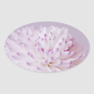 Soft Pastel Flower Photography Oval Sticker