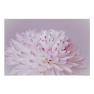 Soft Pastel Flower Photography Poster