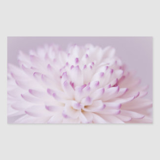 Soft Pastel Flower Photography Rectangular Sticker