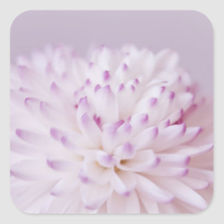 Soft Pastel Flower Photography Square Sticker