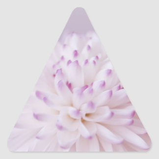 Soft Pastel Flower Photography Triangle Sticker
