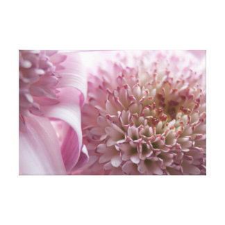 Soft Pastel Flowers Photograph Stretched Canvas Print