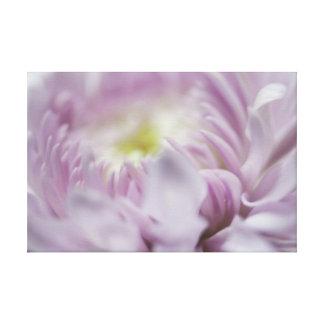 Soft Pastel Lavender Flower Stretched Canvas Prints