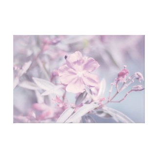 Soft Pastel Lavender Flower Gallery Wrap Canvas