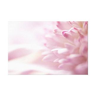 Soft Pastel Pink Flower Canvas Print
