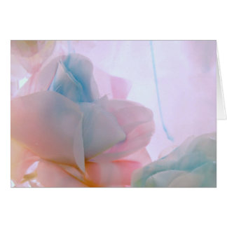 Soft Petals collection original photography by Lis Card