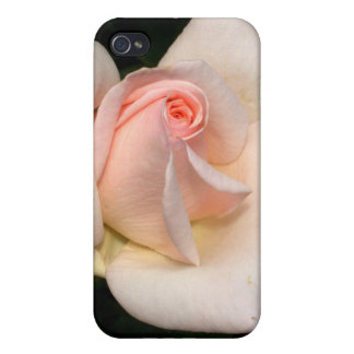 Soft PInk Beauty Cover For iPhone 4