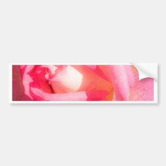 Soft Pink Bumper Sticker