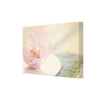 Soft Pink Cherry Blossom Flower Canvas Print