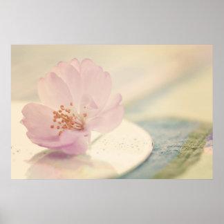 Soft Pink Cherry Blossom Flower Poster
