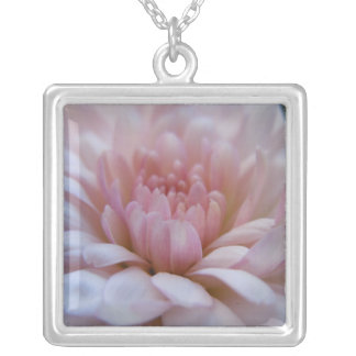 Soft Pink Chrysanthemum Silver Plated Necklace