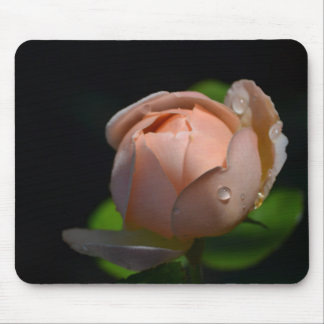 Soft Pink English Rose Mouse Pad