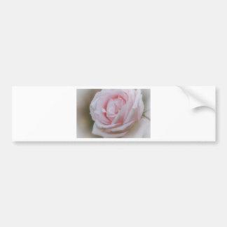 Soft Pink Flower.tif Bumper Sticker