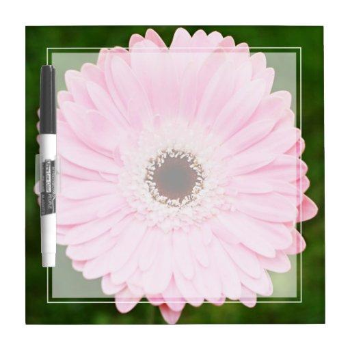 Soft Pink Gerbera Daisy Dry Erase Board