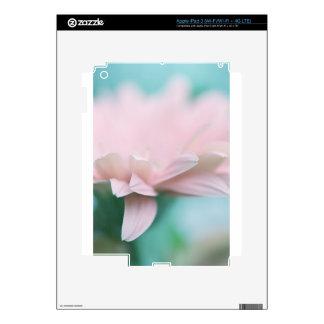 Soft Pink Gerbera Daisy Skins For iPad 3