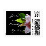 Soft Pink Lily-Postcard Stamp- customize